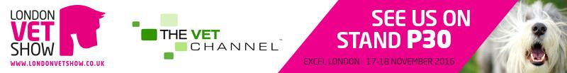 lvs_banner_vet-channel_800x103
