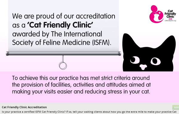 Has your practice been accredited as a 'Cat Friendly Clinic'?