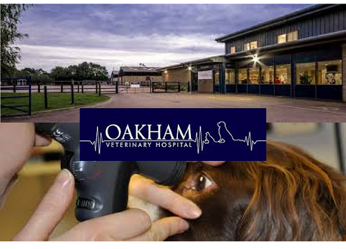 Oakham Veterinary Hospital – 'Only Positive Remarks!' about The Vet Channel team and system!