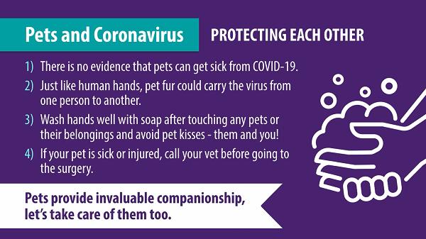 New Coronavirus 'Pet Advice' videos